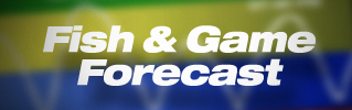 Click here to access the fish & game forecast.
